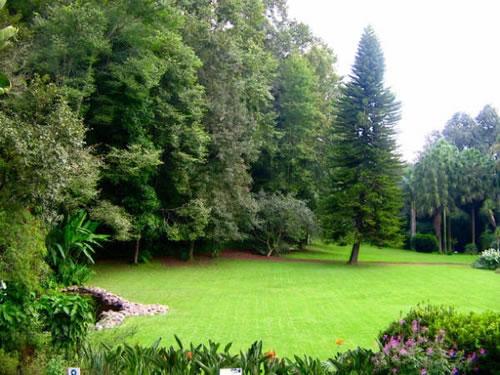 Maniser travel informaci n turistica de m xico hoteles for Jardin botanico numero telefonico